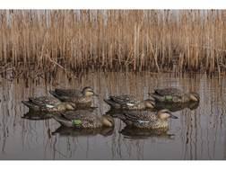 Avian-X Top Flight Early Season Teal Duck Decoy Pack of 6