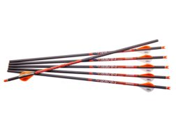 "Ravin 20"" Carbon Crossbow Bolt 2"" Vanes .003 Straightness Black Pack of 6"