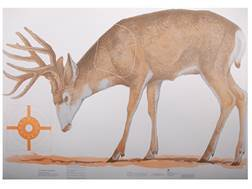 NRA Official Lifesize Game Targets Mule Deer Paper Pack of 12