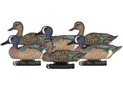 Dakota Decoy X-Treme Blue Wing Teal Duck Decoy Pack of 6