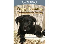 Gun Dog: Puppy Training: The Foundation of a Gun Dog DVD