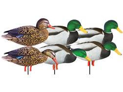 GHG Pro-Grade January Mallard with Flocked Head Drake Harvester Full Body Duck Decoy Pack of 6