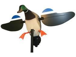 MOJO Mallard Drake with Remote Motion Duck Decoy Polymer