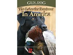 The Labrador Retriever in America DVD