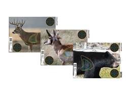 "Champion VisiColor Real Life Big Game Targets 18"" x 12"" Paper Pack of 12"