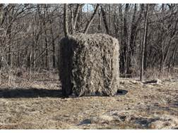 Banks Blinds Box Blind Ghillie Cover Camo
