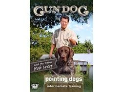 Gun Dog: Intermediate Training: Pointing Dogs DVD