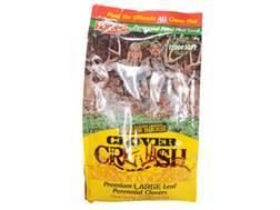 Evolved Harvest Clover Crush Blend Perennial Food Plot Seed Bag 2 lb