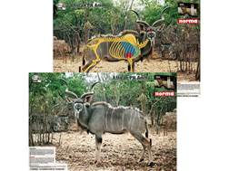 Safari Press Perfect Shot African Plains Game Target Warthog, Kudu, Impala Springbok, and Wildebe...