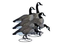 Higdon Alpha Magnum Full Body Canada Goose Decoy Polymer Pack of 6