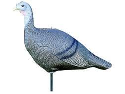 Feather Flex 3 Position Hen Turkey Decoy