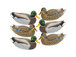 Final Approach Livecraft Mallard Duck Decoy Pack of 6