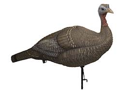 Lucky Duck Collapsible Hen Turkey Decoy