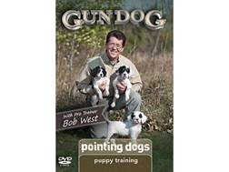 Gun Dog: Puppy Training: Pointing Dogs DVD