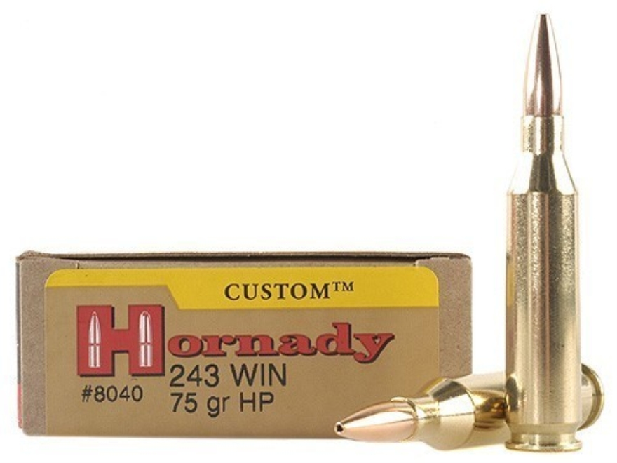 Hornady Custom Ammunition 243 Winchester 75 Grain Hollow Point Box of 20