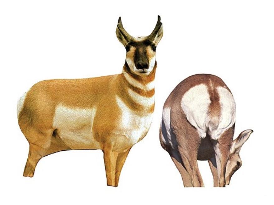 Montana Decoy Buck/Doe Antelope Decoy Set Cotton, Polyester and Steel