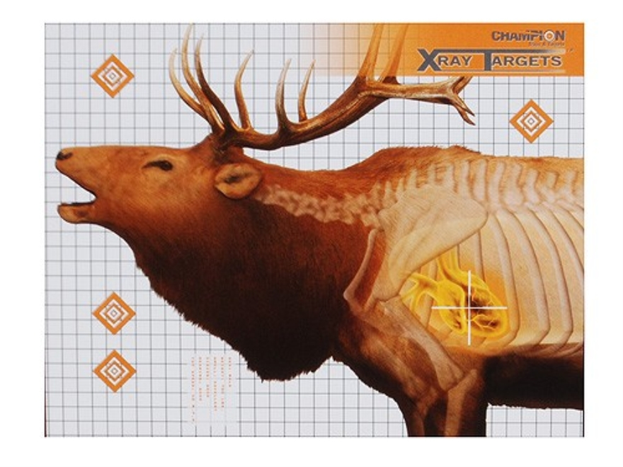 "Champion XRay Elk Targets 36"" x 30"" Pack of 6"