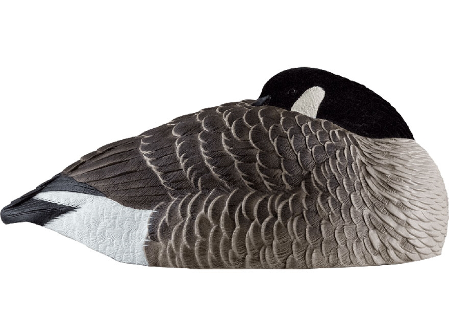 Avian-X AXP Canada Sleeper Shell Goose Decoy Pack of 6