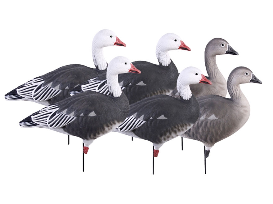 GHG Pro-Grade Full Body Blue Goose Decoy Pack of 6