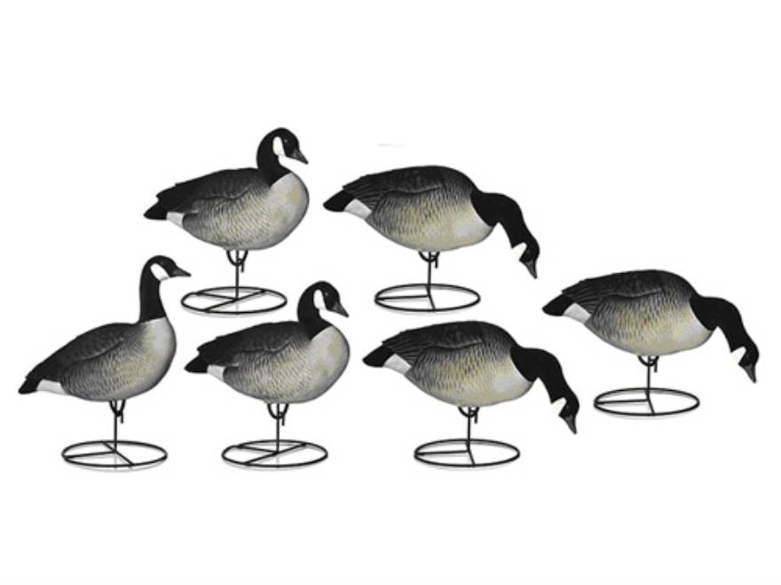 Dakota Decoys Fully Flocked XFD X-Treme Lesser Canada Goose Decoys Pack of 6