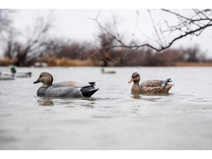 Tanglefree Pro Series Duck Decoy Weighted Keel Gadwall Duck Decoy Pack of 6