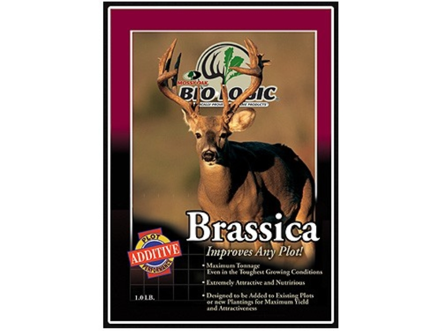 BioLogic Brassica Annual Food Plot Seed 1 lb