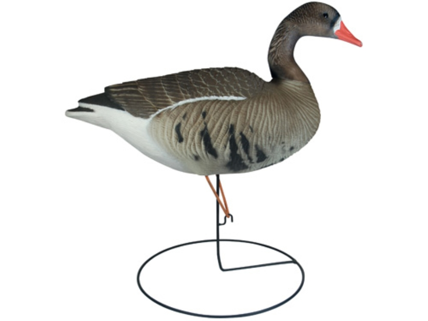 Tanglefree Pro Series Full Body Upright Specklebelly Goose Decoys Pack of 6