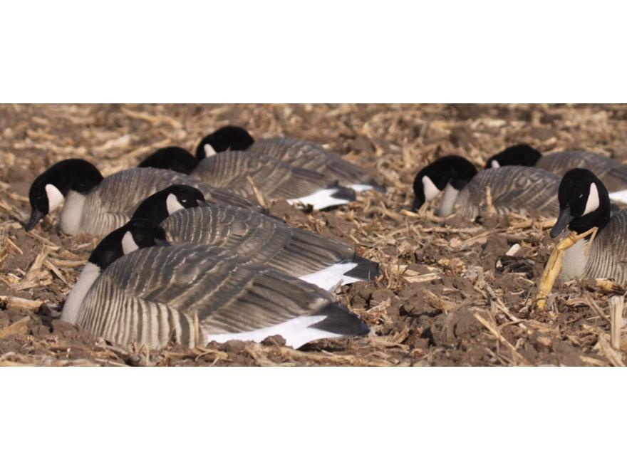 GHG Pro-Grade Honker Sleeper Goose Decoy Shells Pack of 12