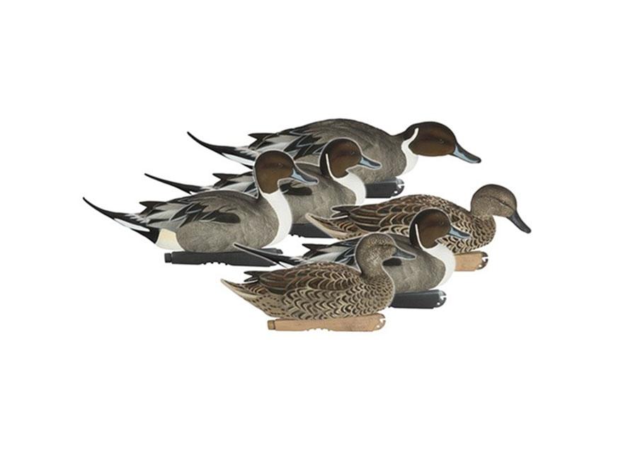 GHG FFD Pro-Grade Pintail Duck Decoy Pack of 6