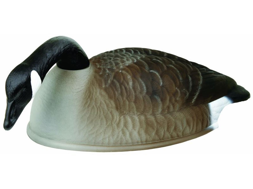 Flambeau Storm Front Standard  Shell Canada Goose Decoys Pack of 12