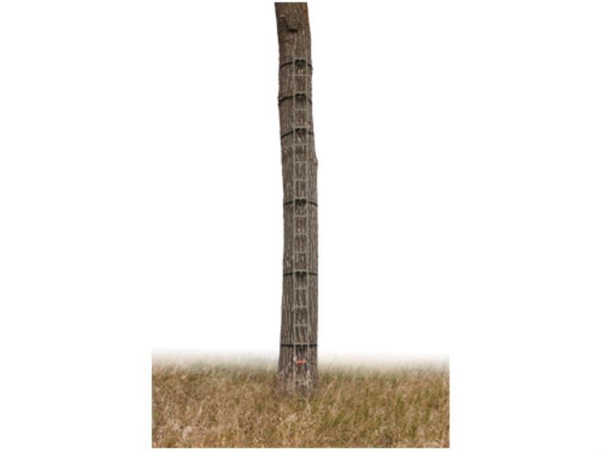 API Outdoors 20' Quik Stik Ladder Aluminum Brown