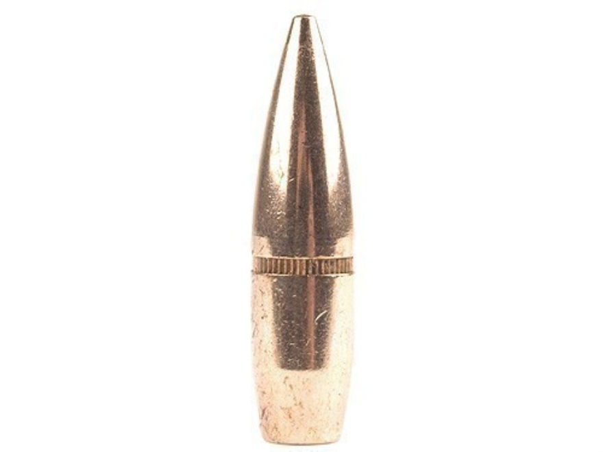 Factory Second Bullets 303 Caliber and 7.7mm Japanese (3105 Diameter) 174 Grain Full Me...