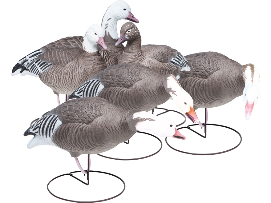 Final Approach Last Pass HD Outfitter Pack Full Body Blue Goose Decoy Pack of 6