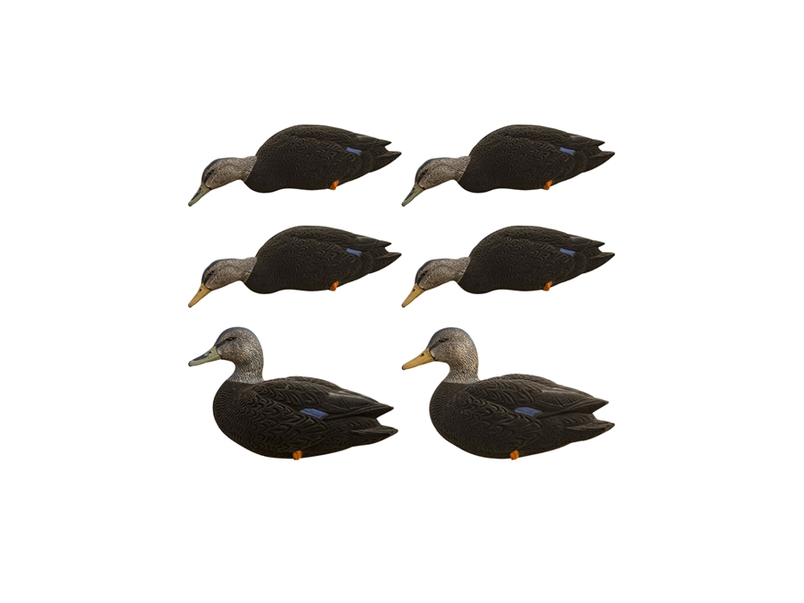 Avian-X Top Flight Full Body Black Duck Decoy with Slot Bag Pack of 6