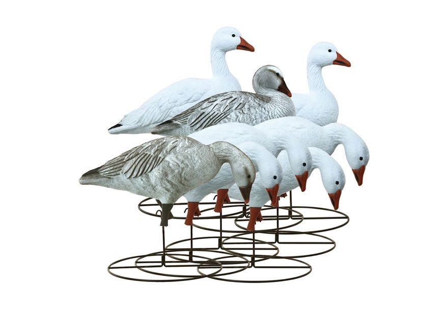 Higdon Full Size Full Body Snow Goose Decoy Polymer Pack of 8
