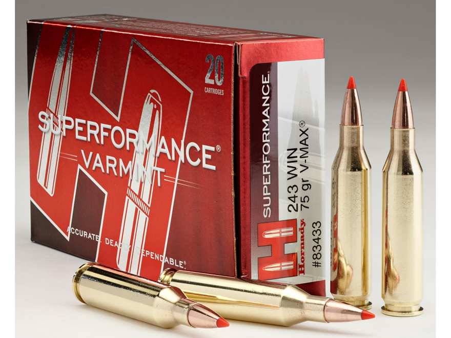 Hornady Superformance Varmint Ammunition 243 Winchester 75 Grain V-Max Box of 20