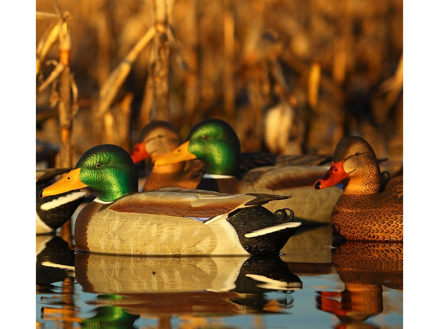 GHG Pro-Grade Pre-Texas Rigged Harvester Pack Mallard Duck Decoy with Flocked Drake Hea...