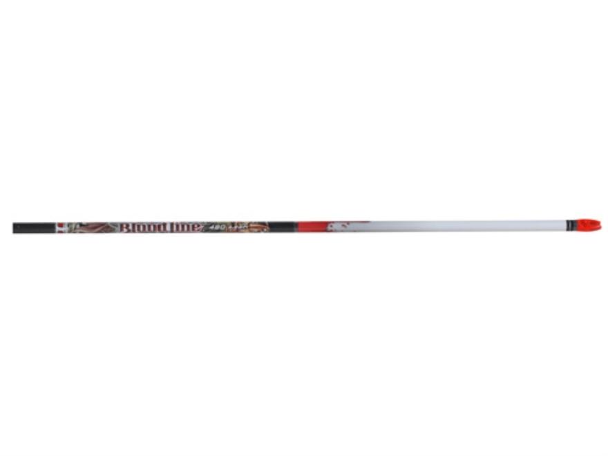 Easton Bloodline Carbon Arrow