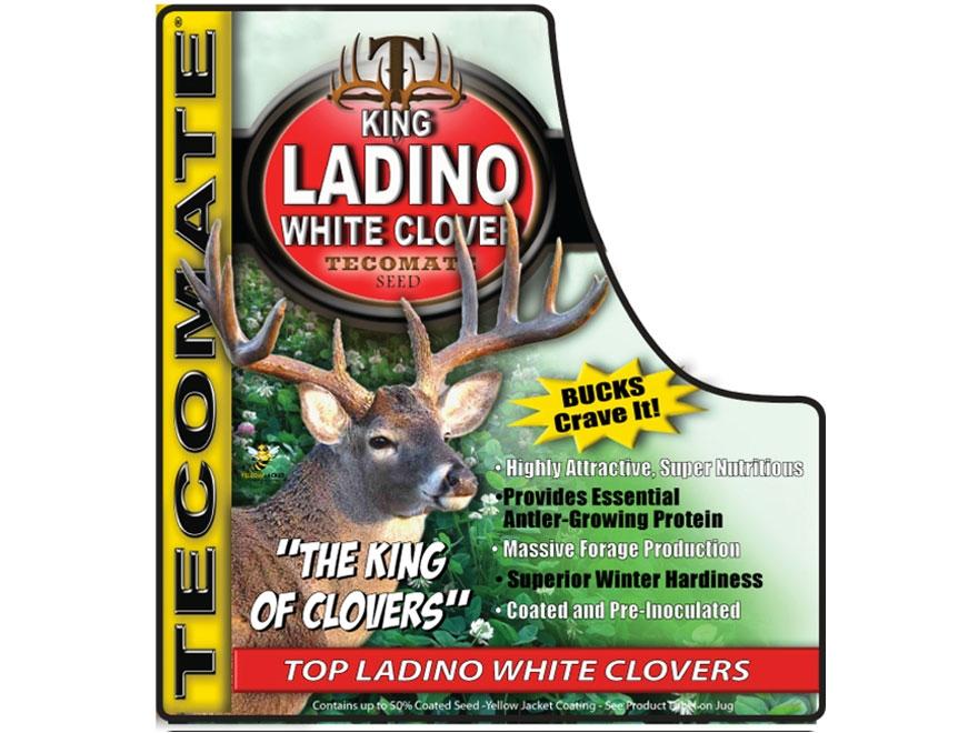 Tecomate King Ladino White Clover Plus Perennial Food Plot Seed 3.25 lb
