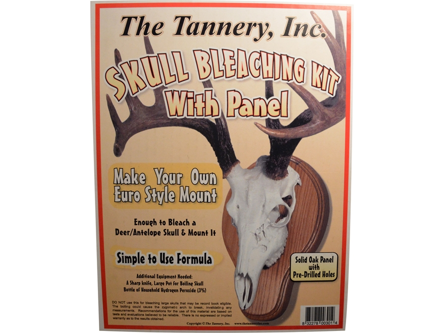 The Tannery Skull Bleaching Kit With Plaque