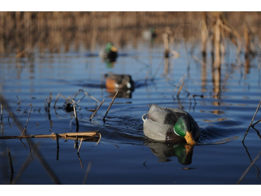 GHG Swimmer-Chaser Decoy Motion Kit Combo with 2 Decoys