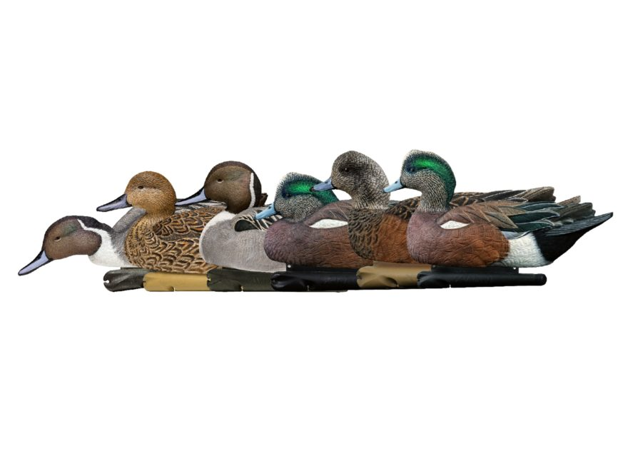 Avian-X Pacific Flyway Combo Pack Duck Decoy Pack of 6