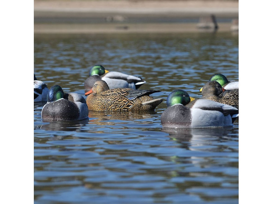 GHG Pro-Grade Mallard Rester January Duck Decoy Pack of 6