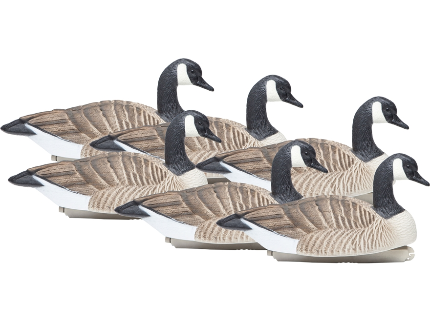 Final Approach Standard Size Active Honker Floater Canada Goose Decoy Pack of 6