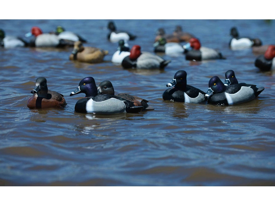 GHG Pro-Grade Ring-Necked Duck Decoy Pack of 6