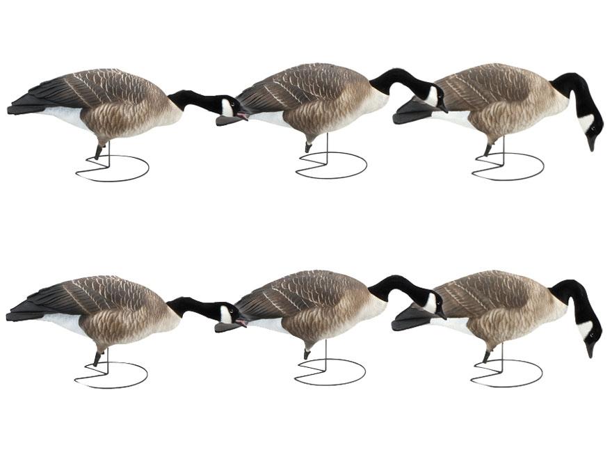 GHG Commercial Grade Full Body Honker Goose Decoy Pack of 6