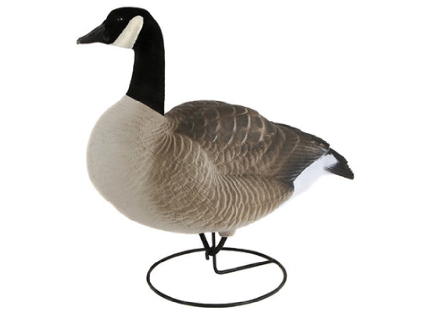 Dakota Decoys X-Treme Full Body Canada Goose Decoys Actives Pack of 6