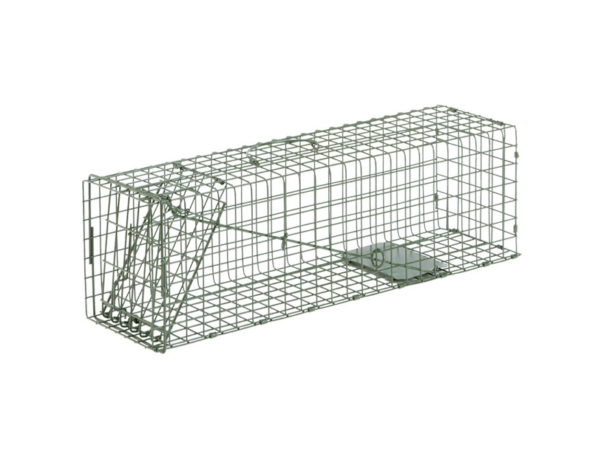 Duke #2 Single Door Cage Trap Steel Silver