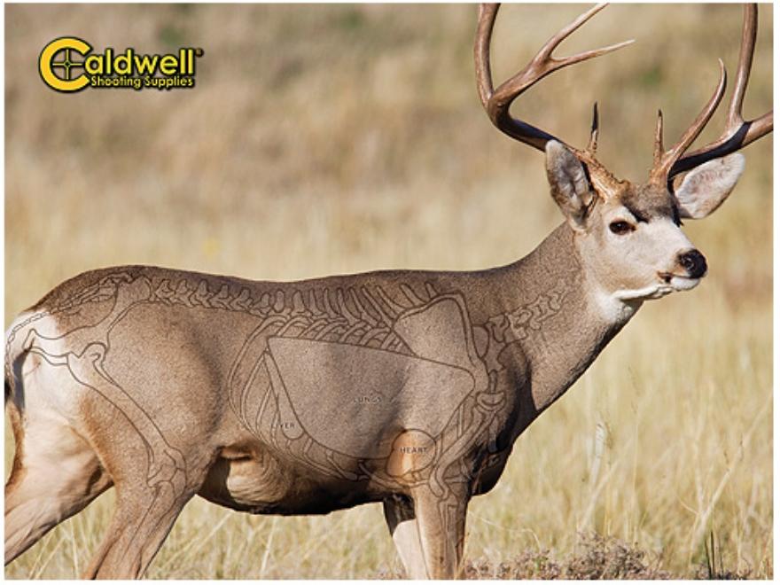 "Caldwell ""The Natural Series"" Mule Deer Target"