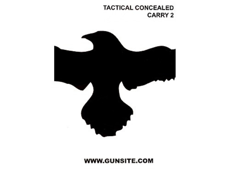 "Gun Video ""Gunsite Tactical Concealed Carry 2"" DVD"